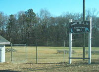 image of multipurpose ball field